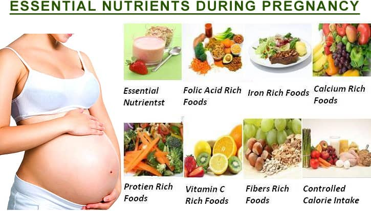 nutrients during pregnancy